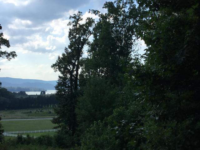 373 Walking Horse Tr, Rockwood, TN 37854 (#1056707) :: Billy Houston Group