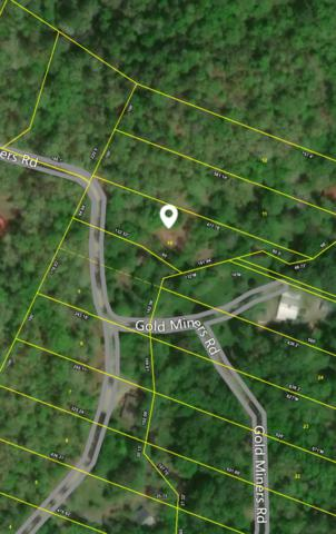 102 Gold Miners Rd, Tellico Plains, TN 37385 (#1056794) :: Billy Houston Group
