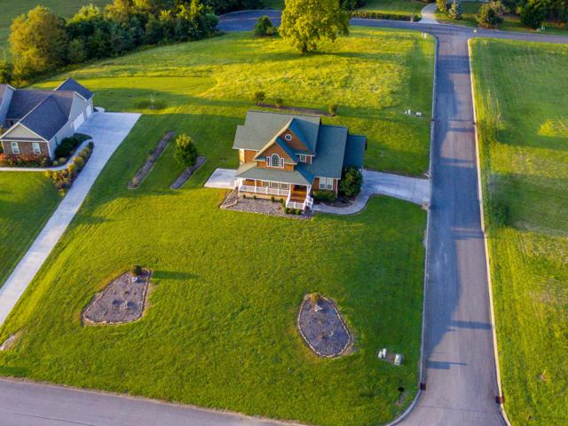 1113 Legacy Bay Drive, Mooresburg, TN 37811 (#1056805) :: Billy Houston Group