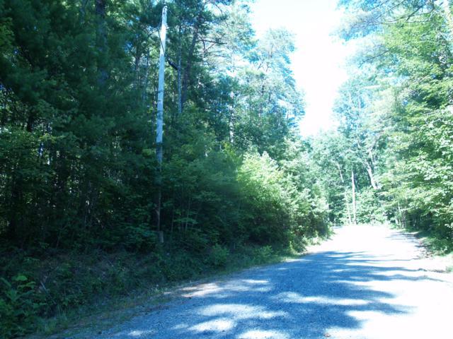 2842 Overlook View, Walland, TN 37886 (#1056820) :: Billy Houston Group