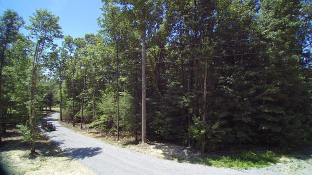 Lot 49 Homestead Hollow Rd, Lancing, TN 37770 (#1056831) :: Billy Houston Group