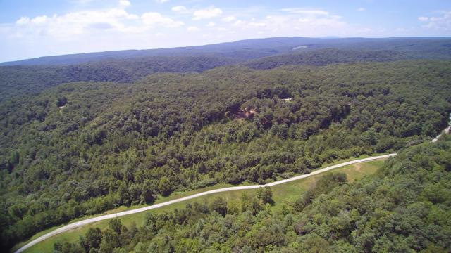 Lot 51 Homestead Hollow Rd, Lancing, TN 37770 (#1056846) :: Billy Houston Group