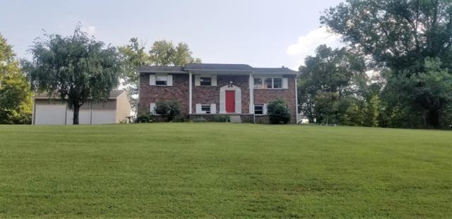 8604 Nubbin Ridge Rd, Knoxville, TN 37923 (#1056950) :: Billy Houston Group