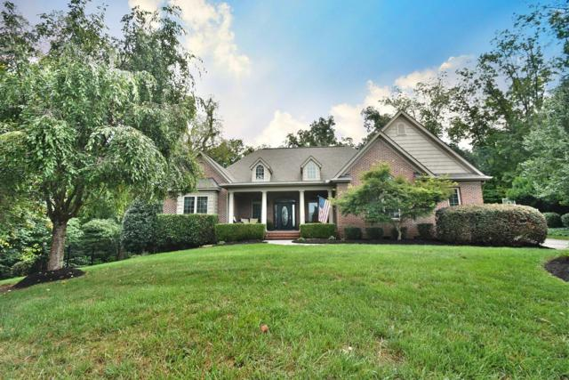 6700 Long Shadow Way, Knoxville, TN 37918 (#1056962) :: Shannon Foster Boline Group