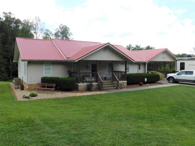 875 Deep Springs Cemetery Rd, Dandridge, TN 37725 (#1056963) :: SMOKY's Real Estate LLC