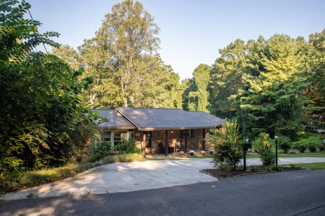 1317 Smoky Mountain View Drive, Seymour, TN 37865 (#1056974) :: Billy Houston Group
