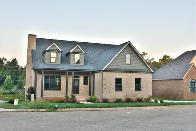 1751 Apple Grove Lane, Knoxville, TN 37922 (#1056978) :: Billy Houston Group