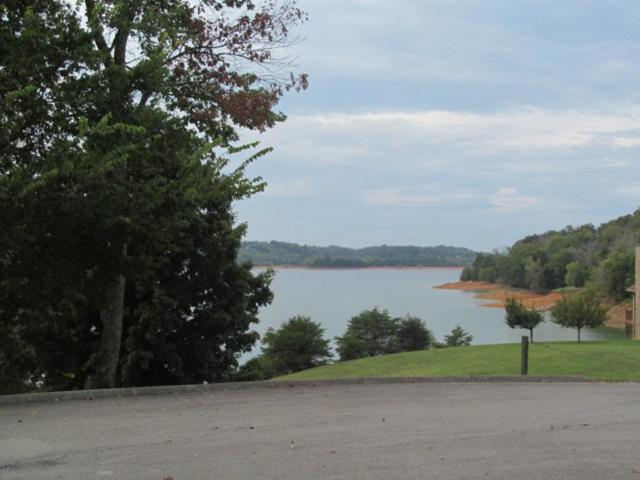 608 Watercrest Lane, Dandridge, TN 37725 (#1056984) :: Billy Houston Group
