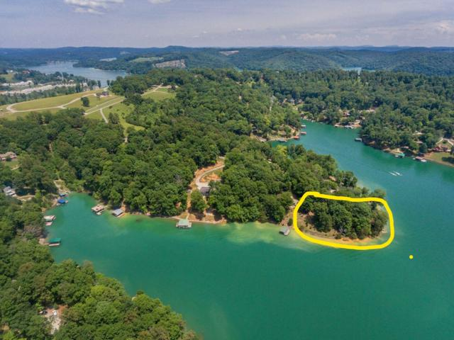 Big Pine Point, LaFollette, TN 37766 (#1056996) :: Billy Houston Group