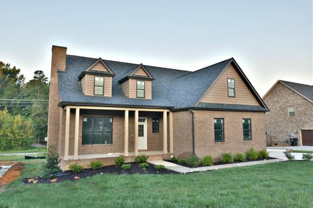 1731 Apple Grove Lane, Knoxville, TN 37922 (#1057004) :: Billy Houston Group