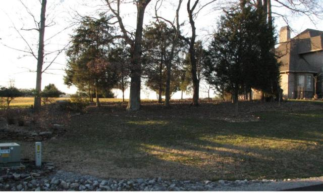 Sikwa Tr, Vonore, TN 37885 (#1057016) :: Billy Houston Group