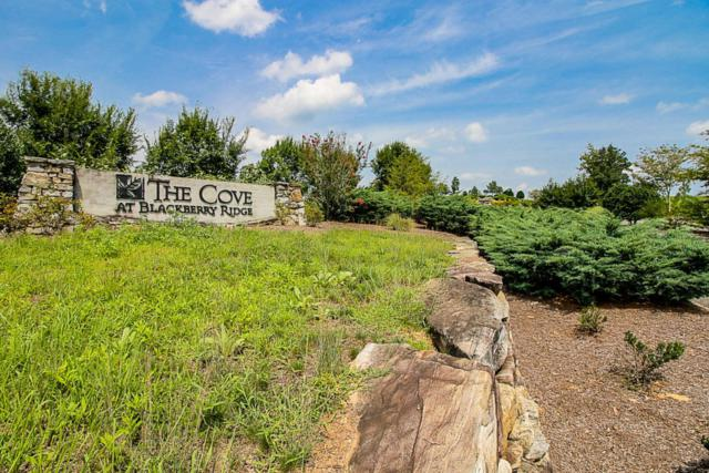 Lake Ferry Drive, Loudon, TN 37774 (#1057089) :: Billy Houston Group