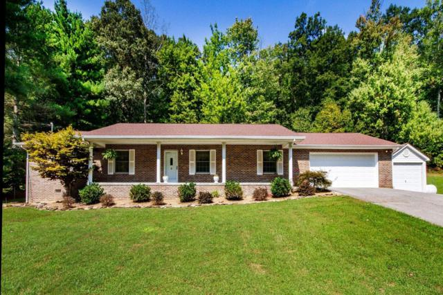 9825 Mcelhaney Drive, Corryton, TN 37721 (#1057109) :: Shannon Foster Boline Group