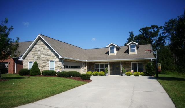 1131 Mercer Drive, Maryville, TN 37801 (#1057167) :: Shannon Foster Boline Group