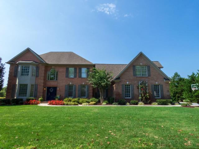 305 Brochardt Blvd, Knoxville, TN 37934 (#1057186) :: Shannon Foster Boline Group