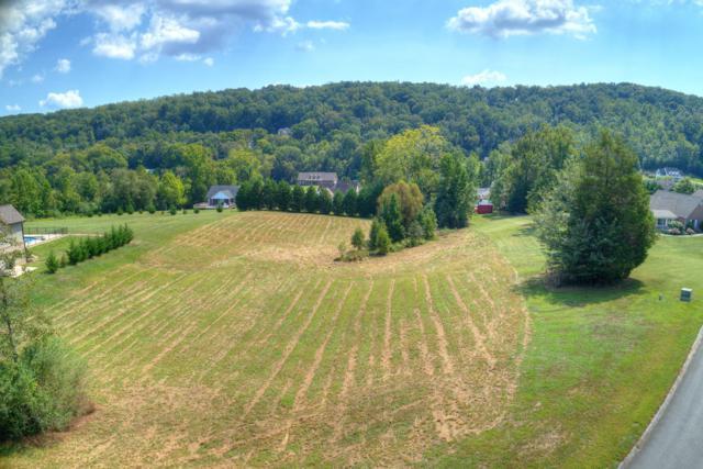 145 Old Farm Rd, Lenoir City, TN 37771 (#1057188) :: Shannon Foster Boline Group