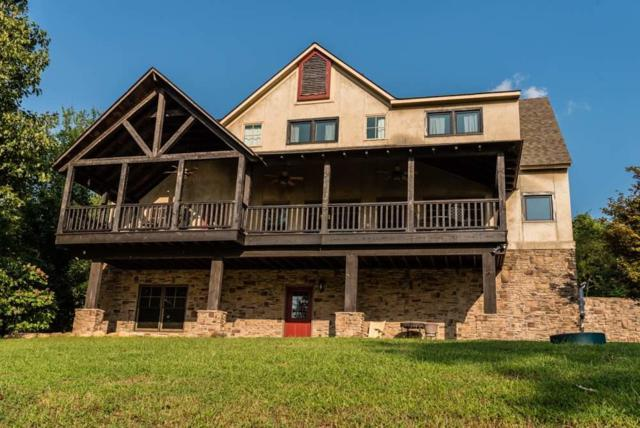 1201 Johnson Lane, Ten Mile, TN 37880 (#1057244) :: Billy Houston Group