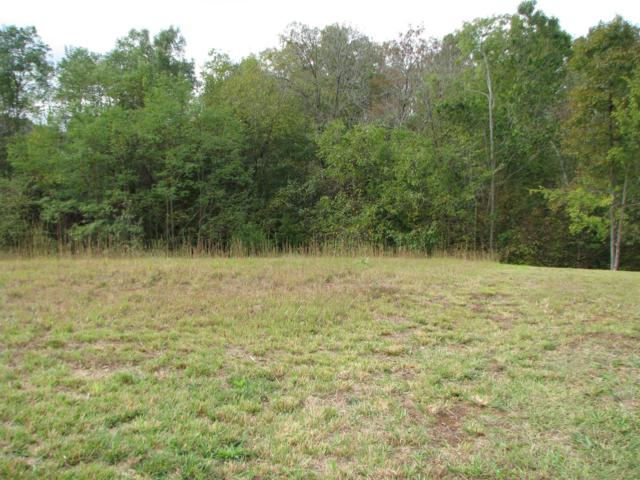 Lot 19 Riverbend Drive, Dandridge, TN 37725 (#1057253) :: Billy Houston Group