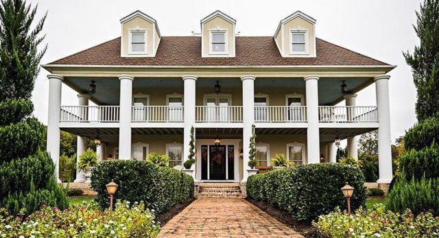 150 Cedar Grove Rd, Loudon, TN 37774 (#1057278) :: Shannon Foster Boline Group