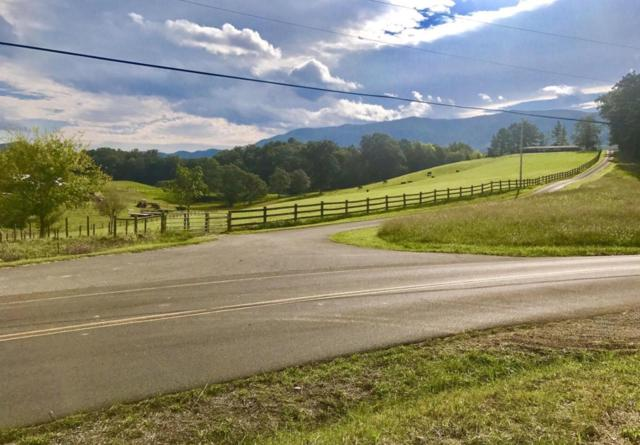 County Line Rd, Sevierville, TN 37876 (#1057310) :: Shannon Foster Boline Group