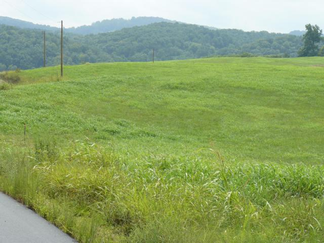 Lot 30 Lookout Drive, Rutledge, TN 37861 (#1057397) :: Billy Houston Group