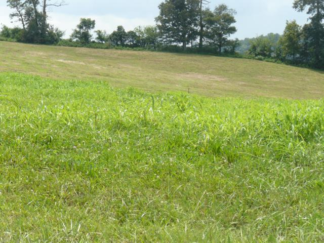 Lot 20 Lookout Drive, Rutledge, TN 37861 (#1057410) :: Billy Houston Group