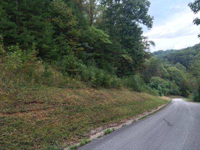 Shady Cove/ Emerald Glen, Caryville, TN 37714 (#1057434) :: Shannon Foster Boline Group