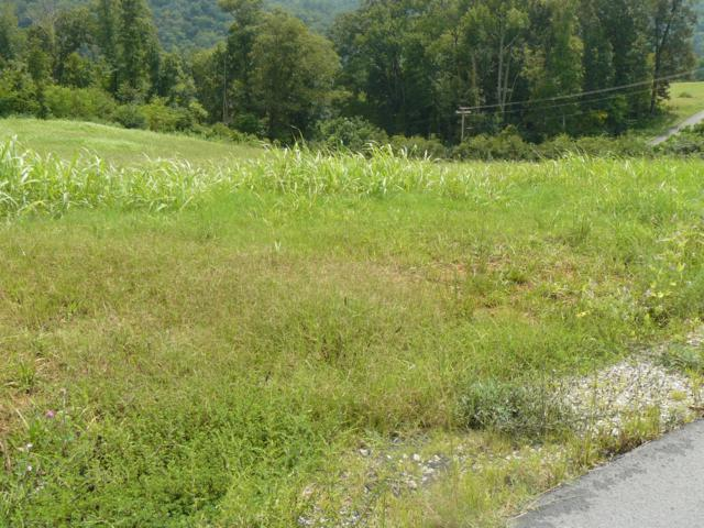 Lot 12 Lookout Drive, Rutledge, TN 37861 (#1057505) :: Billy Houston Group