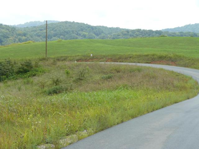 Lot 13 Lookout Drive, Rutledge, TN 37861 (#1057509) :: Billy Houston Group