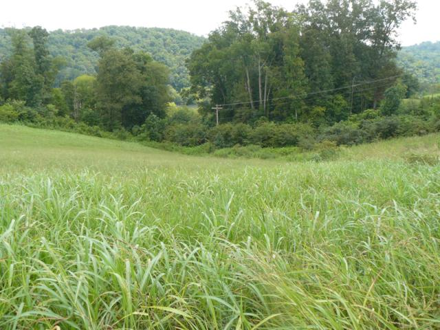 Lot 14 Lookout Drive, Rutledge, TN 37861 (#1057517) :: Billy Houston Group