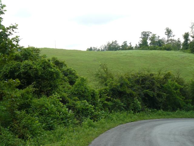 Lot 15 Lookout Drive, Rutledge, TN 37861 (#1057521) :: Billy Houston Group