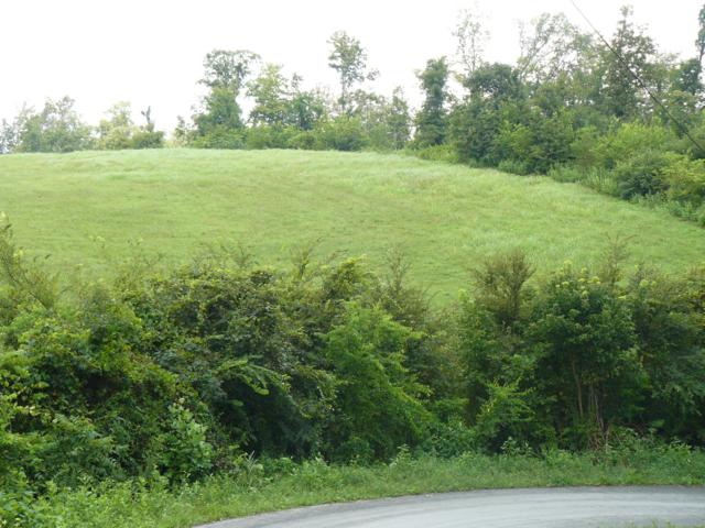 Lot 16 Lookout Drive, Rutledge, TN 37861 (#1057532) :: Billy Houston Group