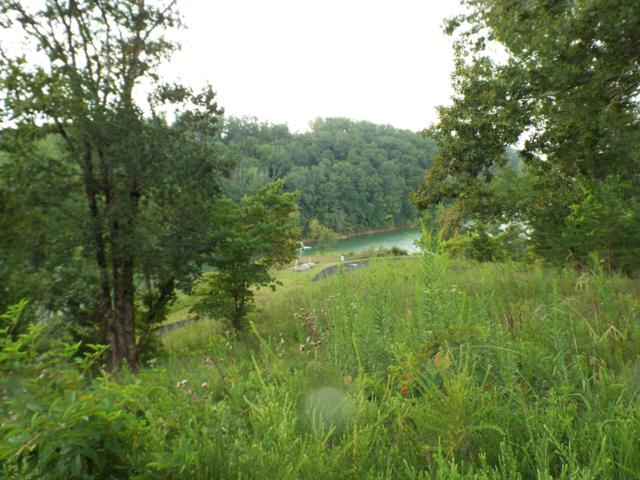 Lot 9 Stone Cove Way, Dandridge, TN 37725 (#1057671) :: The Creel Group | Keller Williams Realty