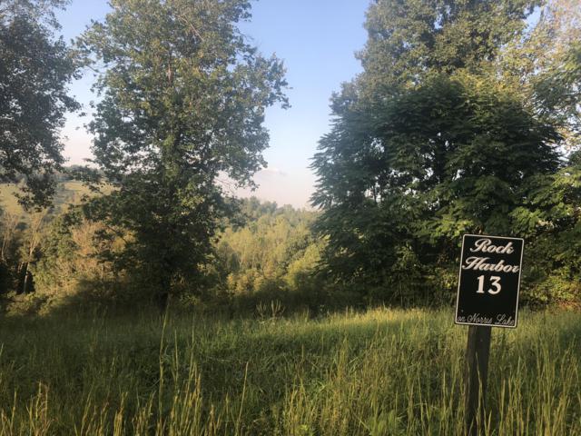 Smokey Quartz Blvd, New Tazewell, TN 37825 (#1057982) :: Billy Houston Group