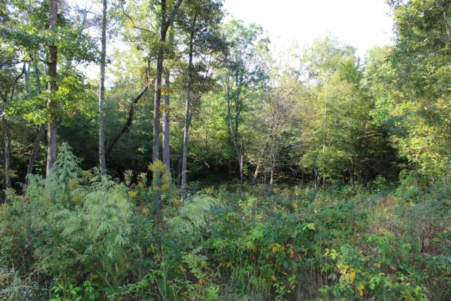 Mountain Preserve Court Lot 11, Crab Orchard, TN 37723 (#1058003) :: Billy Houston Group