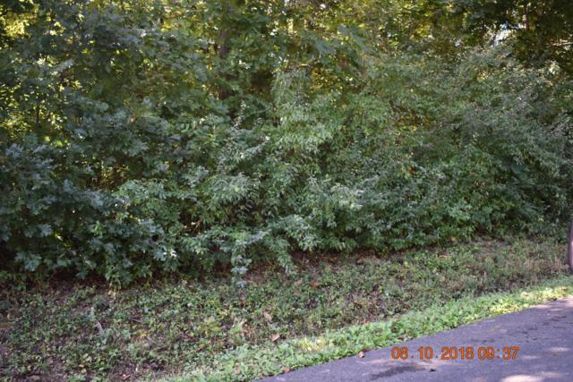 Old Highway 68 Hwy, Madisonville, TN 37354 (#1058090) :: Catrina Foster Group