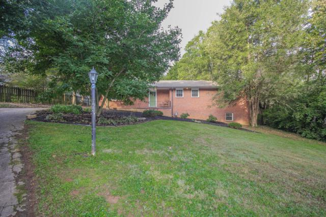 1007 S Chilhowee Drive, Knoxville, TN 37914 (#1058186) :: Billy Houston Group