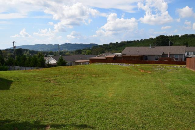 1310 Elm Village Court, Dandridge, TN 37725 (#1058227) :: Billy Houston Group
