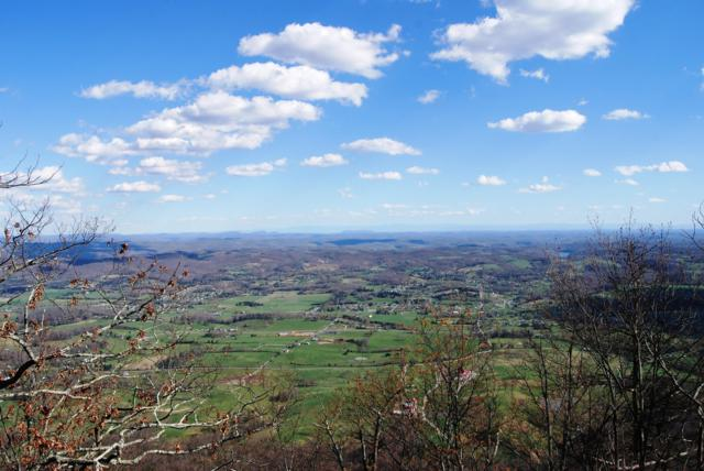 Mt Clouds Tr, LaFollette, TN 37766 (#1058306) :: Billy Houston Group
