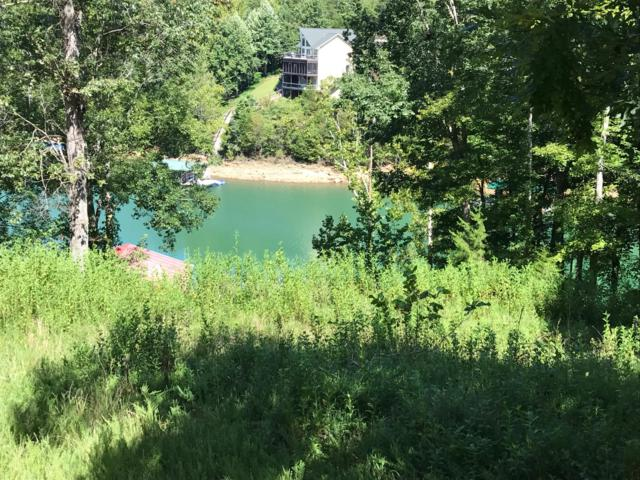 Deer Run Point, LaFollette, TN 37766 (#1058347) :: Shannon Foster Boline Group