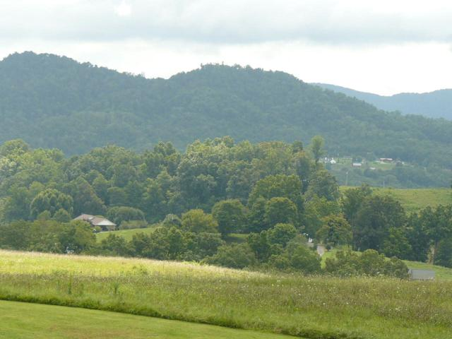 Lot 21 Dudley Lane, Tazewell, TN 37879 (#1058364) :: Shannon Foster Boline Group