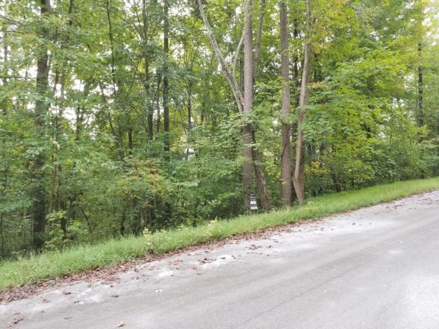 Garnet Trail Lot 532, New Tazewell, TN 37825 (#1058368) :: Shannon Foster Boline Group