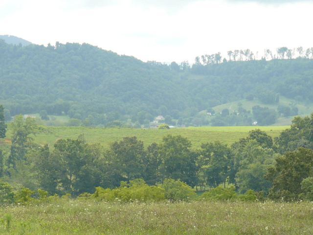 Lot 32 Imogene Lane, Tazewell, TN 37879 (#1058486) :: Venture Real Estate Services, Inc.