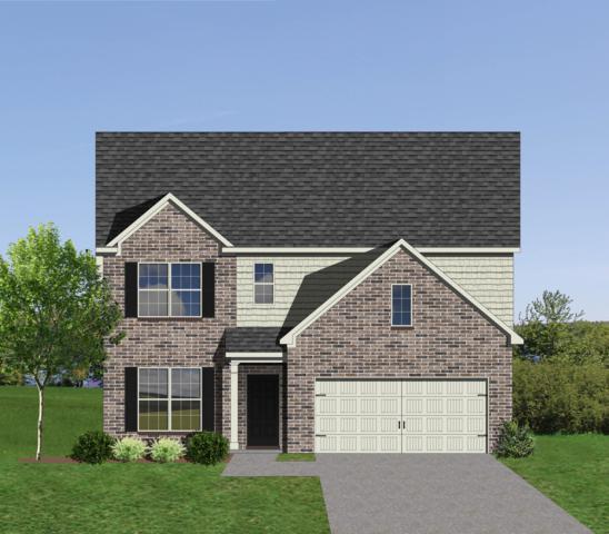 1807 Shadyside Lane, Knoxville, TN 37922 (#1058553) :: Billy Houston Group