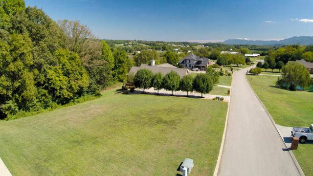 3804 Mary Frances Drive, Maryville, TN 37804 (#1058631) :: Billy Houston Group
