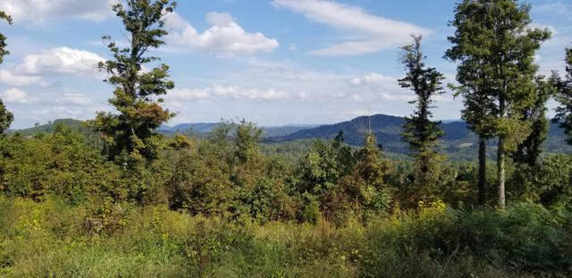 Crown Hill, Maynardville, TN 37807 (#1058643) :: CENTURY 21 Legacy