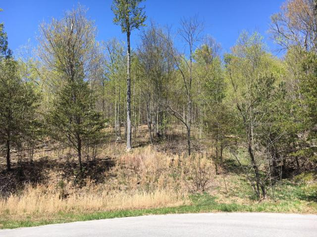 Lot 509 Hidden Springs Rd, New Tazewell, TN 37825 (#1058721) :: CENTURY 21 Legacy