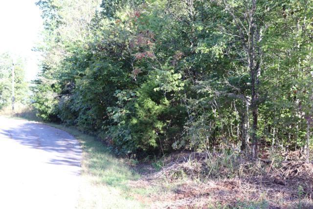 Lot 82 Polly Mtn Rd Pass Olly Mt, Madisonville, TN 37354 (#1058731) :: Catrina Foster Group