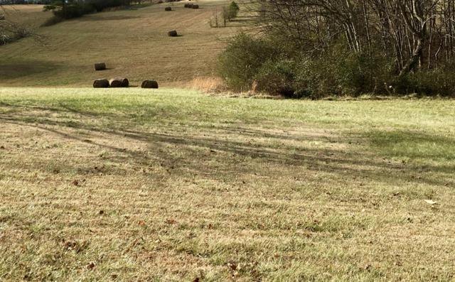 Pond Hill Rd Lot # 7, Niota, TN 37826 (#1058738) :: Billy Houston Group