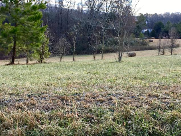 Pond Hill Rd Lot # 2, Niota, TN 37826 (#1058739) :: Billy Houston Group
